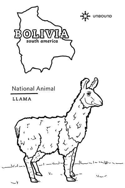 Coloring Page - Lama in Boliva